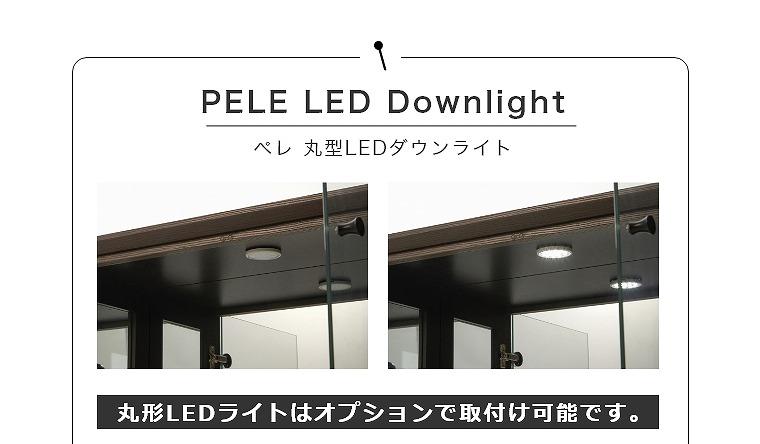 丸形LEDライトはオプションで取付け可能